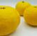 Nein, die Yuzu ist keine japanische Zitrone (Teil 1)