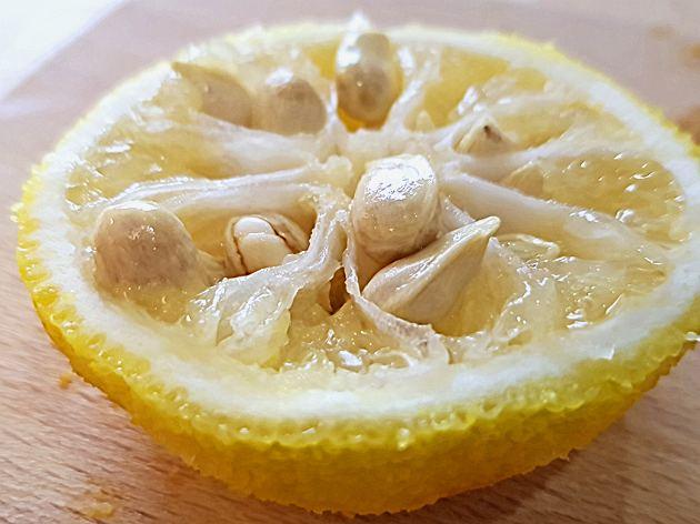 Nein, die Yuzu ist keine japanische Zitrone (Teil 2)