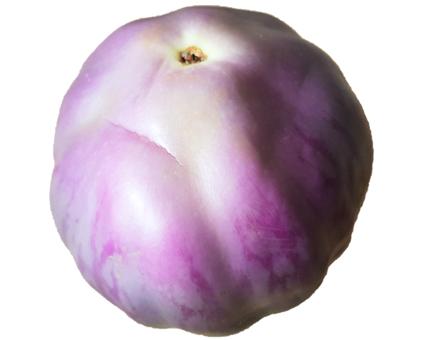 Aubergine (Nasubi)