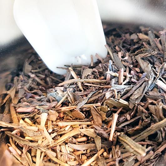 Hojicha-Tee in der Dose