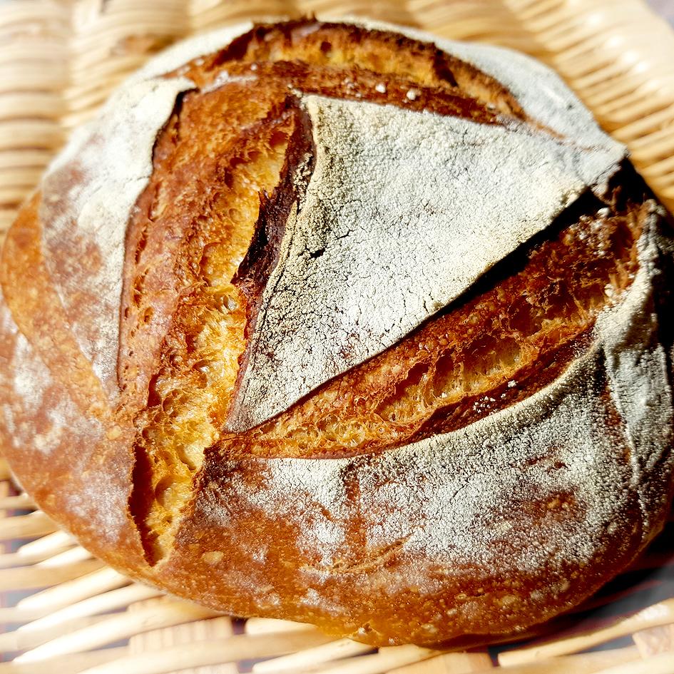 Selbst gebackenes Brot mit eigenem Lievito Madre
