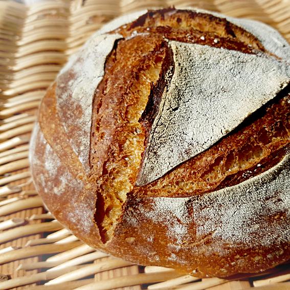 Perfektes Brot mit Lievito Madre