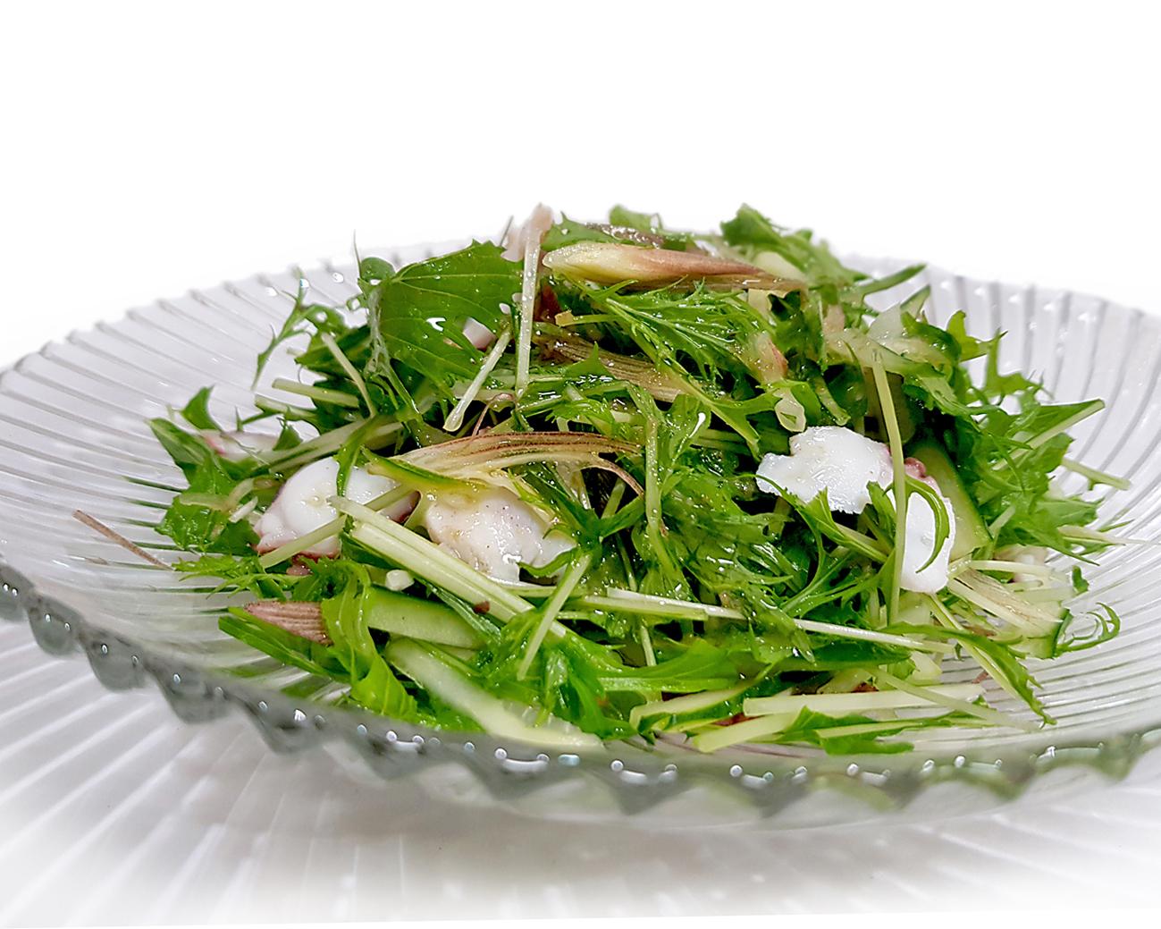 Oktopussalat mit Mizuna und Myoga in Yuzu-Olivenöl-Dressing