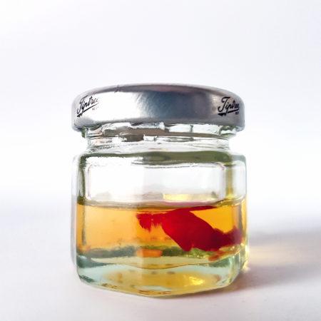 Chili-Öl im Glas mit Schraubverschluss