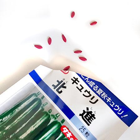 """Gurkensamen """"Hokushin"""" von Takii Seeds"""